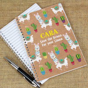 Personalised Llama Notebook